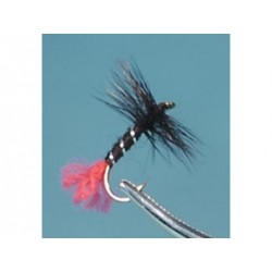 Neptune - Trout Flies - Dry - Black Zulu.