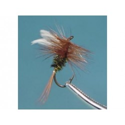 Neptune - Trout Flies - Dry - Coachman.