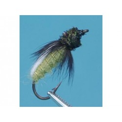 Neptune - Nymphe - Green Emerger.