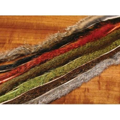 Bandelettes d'écureuil Pine.