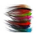 Gaspé Fly - Heron spey hackle