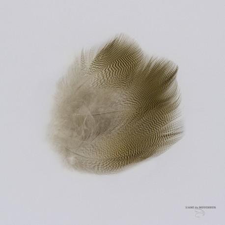 Canard Woodduck - Plume de Flanc - Sac de 12 plumes - Couleur Naturelle.