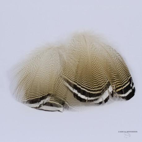 Canard Woodduck - Plume Barrée Noir et Blanc - Sac de 3 Paires - Couleur Naturelle.