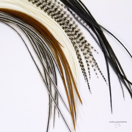 DRY FLY HACKEL - 10 FEATHER I A PACK