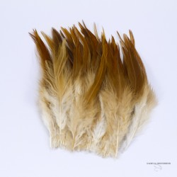 "Hackle - Cock Saddle Natural - Strung - Lenght 6""X8"""