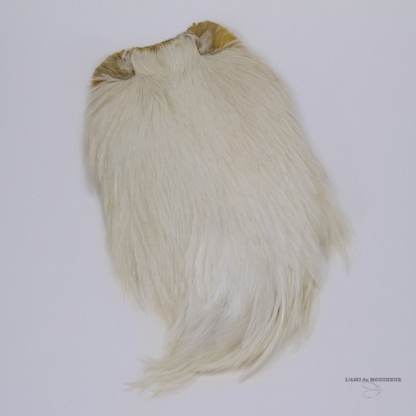 Veniard - Cou coq indien
