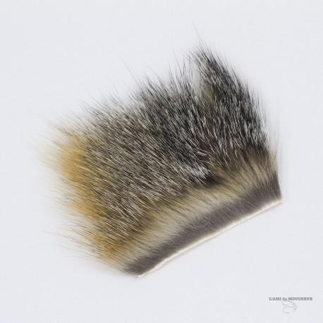 """Renard Gris - Morceau de 2""""X3"""" - Couleur Naturelle."""