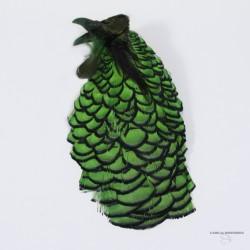 Faisan - Lady Amherst - Tête Complète qualité grade 1 - Choix de 10 couleurs.