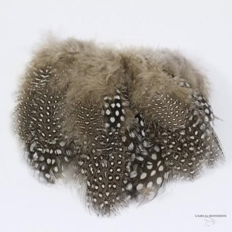 Poule de Guinée - Plumes cousues - Sac de 3 Gr. - Choix de 10 couleurs.